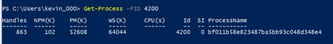 Windows10ProcessName