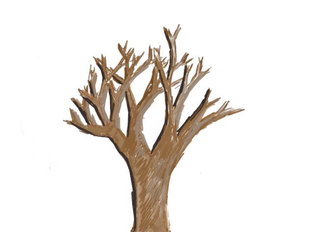 Dormant Tree